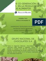 CO-GENERACIÓN DE ENERGÍA EN LA PRODUCCIÓN DE ALIMENTOS