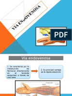 Diapositivas Laura
