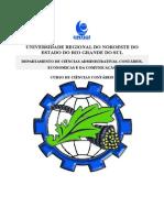 Apostila Engenharia Econômica 2013