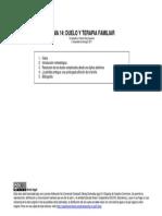 T14 Duelo y Terapia Familiar F