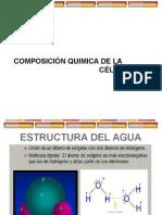 Composicion Quimica Celular
