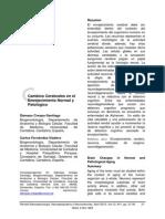 Cambios Cerebrales en El Envejecimiento Normal y Patologico-2012