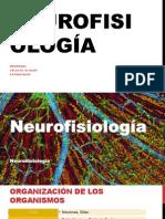 2. Anatomia y Fisiologia (Neurohistología) [INCOMPLETO].pdf