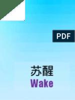 苏醒 Wake