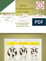 Dieta Restringida en Lactosa (1)