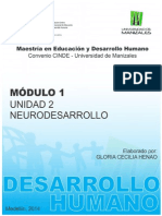Introduccion Neurodesarrollo