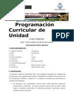 Programacion 3º - Cuarta Unidad -Comunicación 2013 - Copia