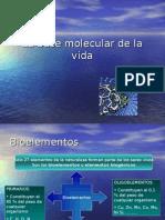 1La Base Molecular de La Vida 1