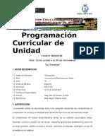 Programacion 2º - Cuarta Unidad -r.verbal 2013. - Copia