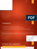 Colesterol1.0