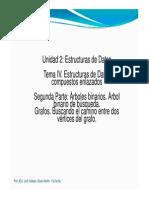 Tema_IV_ArbolesGrafos.pdf