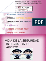 Seguridad Integralll (2)