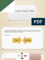 Estructura Matriz Filial