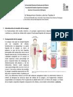 Sangre y Celulas Sanguineas (1a Parte)