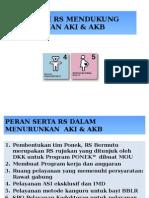 Program PONEK