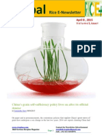 8th April,2015 Global Rice E-Newsletter by Riceplus Magazine