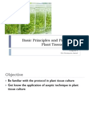 Basic principles and protocol in plant tissue culture | Growth
