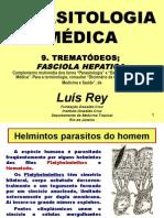 TREMATÓDEOS;  FASCIOLA HEPATICA.