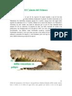 Especies en peligro de extinción Estado Bolívar