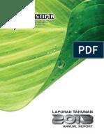 PERSTIM-AnnualReport2013