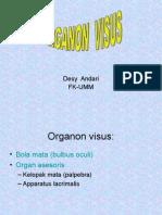 Organon Visus