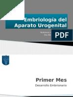 embriogenia del aparato urogenital.