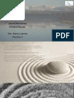 Presentacion Cognitiva con Base en Mindfulness