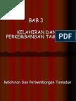 bab_3_-_kelahiran_perkembangan_tamadun.ppt
