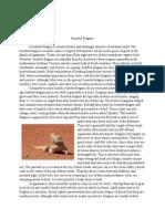 bearded dragon pdf