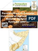 ANTS - Permaculture in Somalia