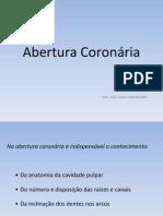 Abertura coronária - Endodontia