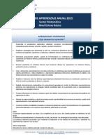 Plan Anual Aprendizaje 8ºBásico Matemática 2015 (1)