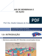 Aula 02-Potencial de membrana.ppt