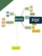 Mapa_mental Aduanero Cauca y Recauca