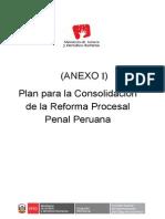 Anexo I Plan Consolidacion RPP