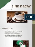 Caffeine Decay