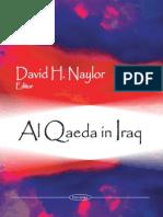Al Qaeda in Iraq (2009)