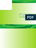 PTCL Consolidated Financials-2013.pdf