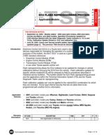 Ecu Flash Reprogramming Process T-ss002-01