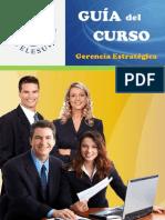 Guia de Curso - Gerencia Estratégica