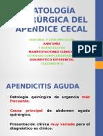 PATOLOGÍA QUIRÚRGICA DEL APÉNDICEE CECAL Y ENFERMEDAD DIVERTICULAR