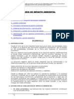 4.1.-ESTUDIO-DE-IMPACTO-AMBIENTAL