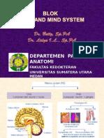 patologi anatomy brain and mind system