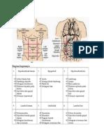 Anatomi Organ Terkait