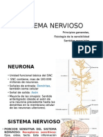 Post Grado Neurociencia i Unidad