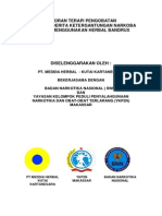 laporan-terapi-pengobatan-ketergantungan-narkoba.pdf