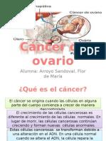 Cancer de Ovario Final