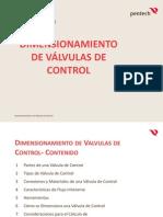 CURSO DE VALVULA GERARDO5.pdf