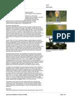 Artocarpus_heterophyllus.pdf