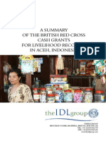 Published Report British Red Cross